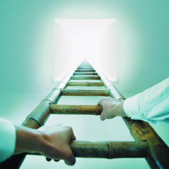 next level, ladder, climb, business