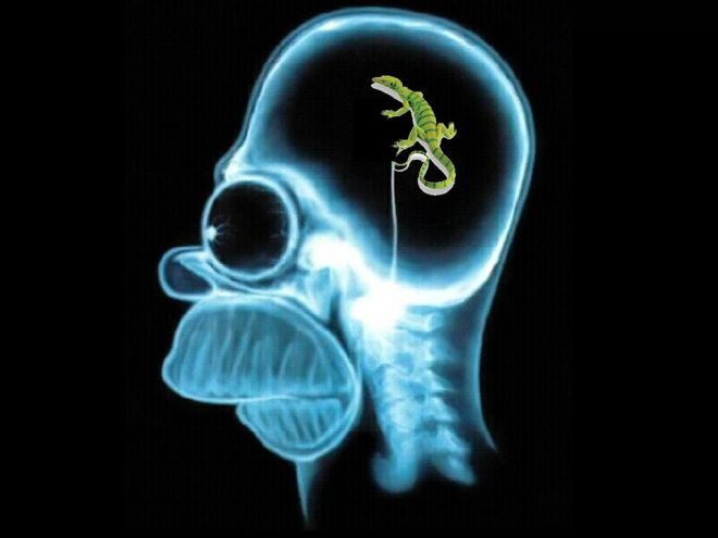 homer simpson with lizard in brain, Lizard Brain